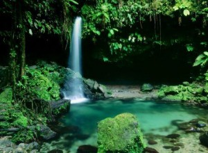 emerald_pool_morne_trois_pitons_national_park_dominica